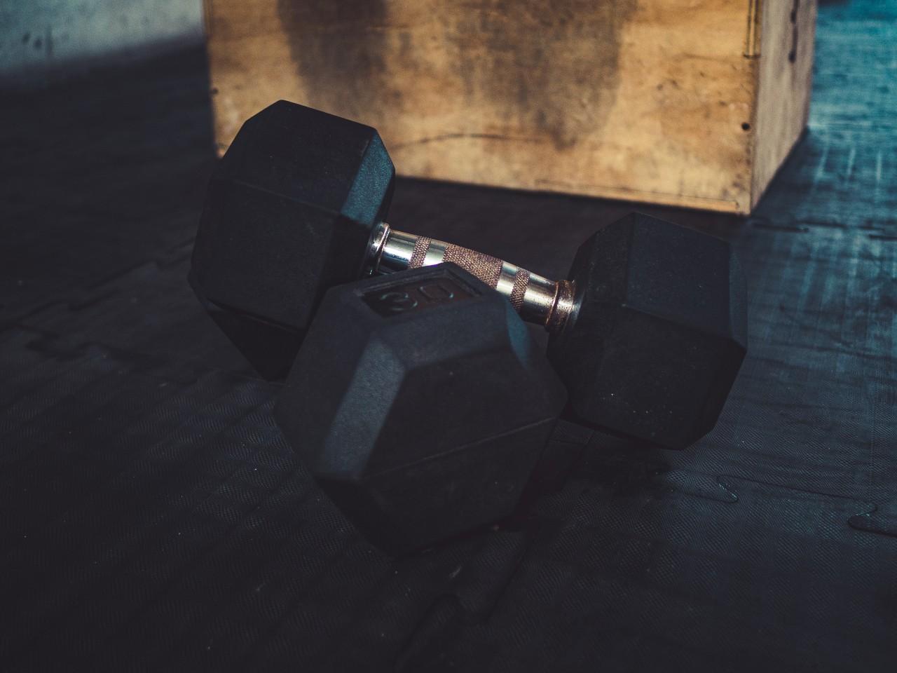 Weights at Tulum Gym